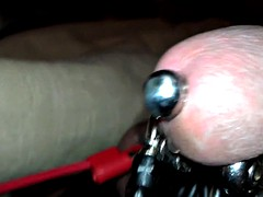 electro tight plug milking