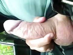 Cockplaying in the car