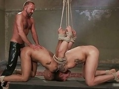 Leo and additionally Trent in utterly extreme gay porno bondage