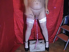 Whipping Balls from Mistress Celine