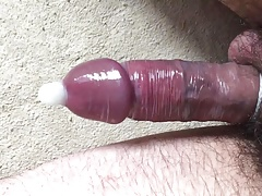 tied up cock
