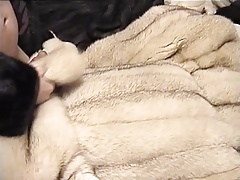 Blue fox fur coat cum shot