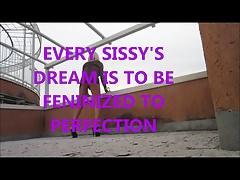 every sissy dream