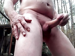 again in the forest