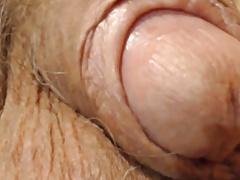 Old cock closeup