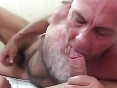 Hot hairy daddy suck cock