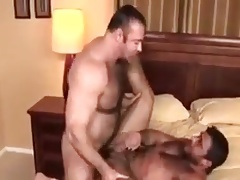 Hairy gays fucking