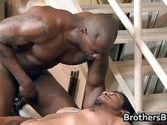 Brothers excited boyfriend gets knob