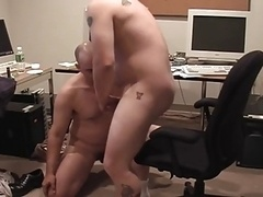Bears making love in the Office