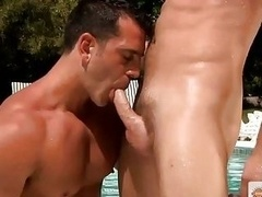 Gaylords worship the sun and plus get excited and plus start sucking