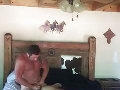Vebal White Cowboy Breeds Black Jock Bitch