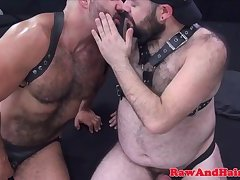 Bareback loving bears enjoying foursome