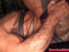 Silver wolf and bear in bareback action