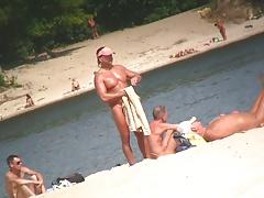 cocks on the beach