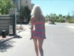 Sierra sexy petite teen blonde car flashing tits