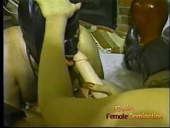 Two hot fillies make a hung stallion suck on a long dildo