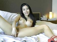Asia Fox 5