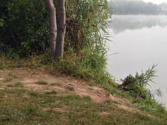 Nice ass at public lake Geiler Hintern am See