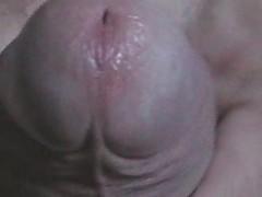 Close Up Phallus