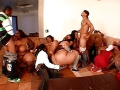 Awesome bbw orgy element 1
