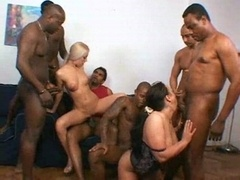 Glamorous interracial bitches adore it rough 1