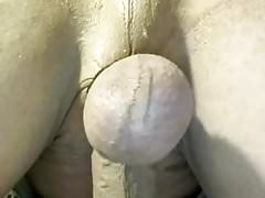 shaved pierced cock with buttplug in ass