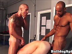 Dominant muscular hunks threeway fuck in gym