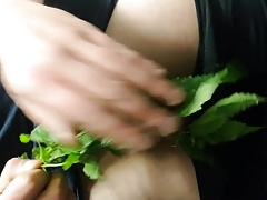 Nettle Day torture part 3