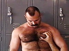 Hairy bears sucking