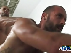 Ass Fucking Hairy Gym Mates And Cumshots