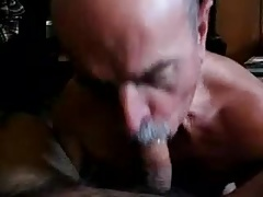 Older men sucking a cock