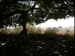 thai young boy masturbating in the woods