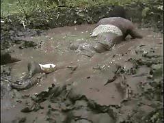 Pati mud wet dress 1