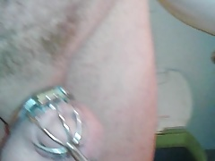 leashed in Chastity