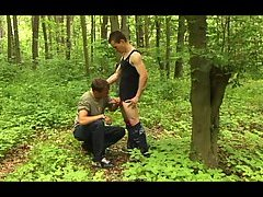 Depraved Action In A Wood