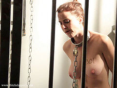 slave licks Lunch in Her cage