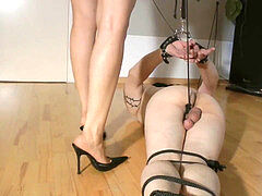 red-hot mistress cock and ball torture