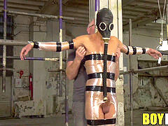 Mature dom Sebastian Kane tantalizes trussed youthfull homosexual