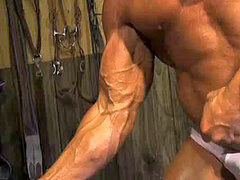 BodybuilderMuscleSolo16