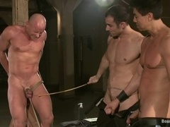 Two slaves get tormented by two dominators in a basement