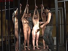 Victim auction ii. first slave sold